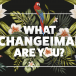 INFOGRAPHIC: What changeimal are you?
